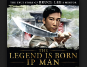 Ip Man The Legend Is Born (2010)