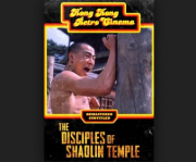 Disciples of Shaolin Temple (1985) staring Ding Laam