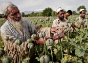 Afghan Overdose: Battle against opium trade (RT Documentary)
